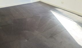 End of Lease Cleaning - Carpet Cleaning